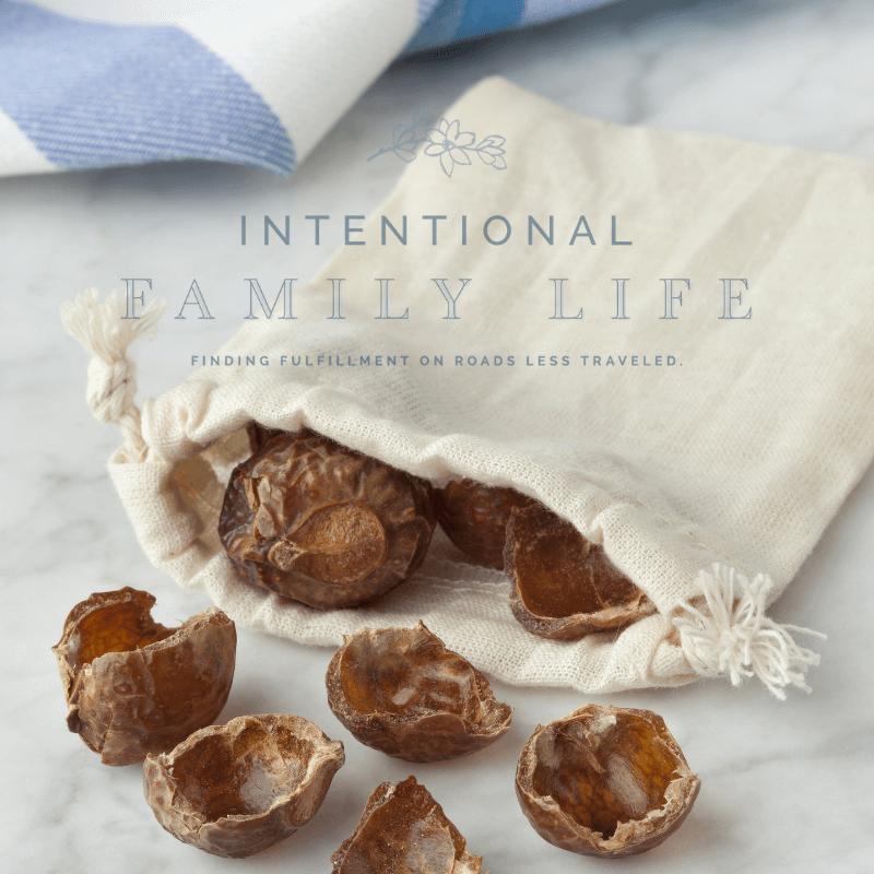 a linen bag of soap nuts